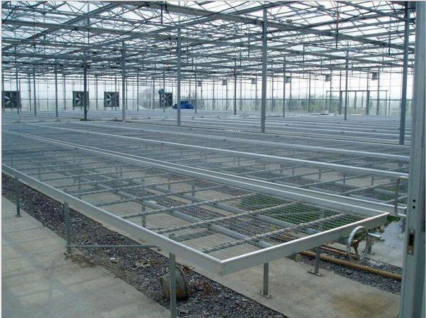 钢结构温室大棚工程3.jpg